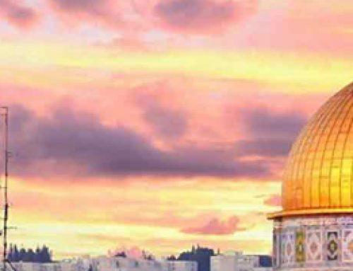 Paket Tour Aqsa Mesir Petra Jordania 2019